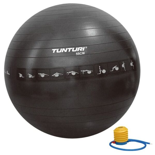 www.homefitness.ie/yoga gym ball